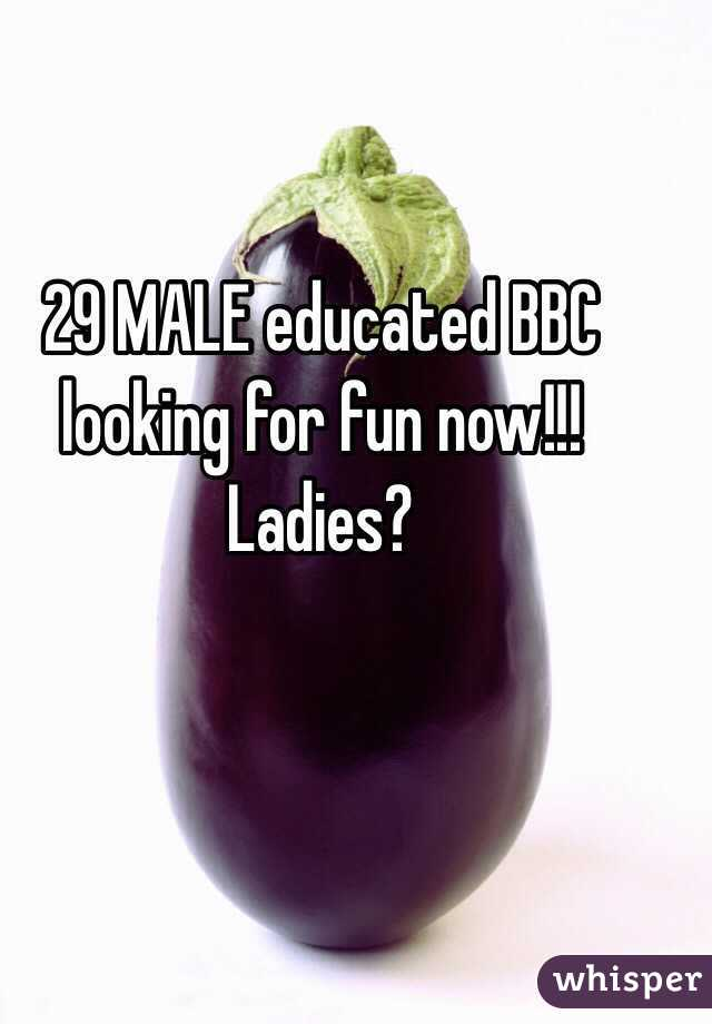 29 MALE educated BBC looking for fun now!!! Ladies?