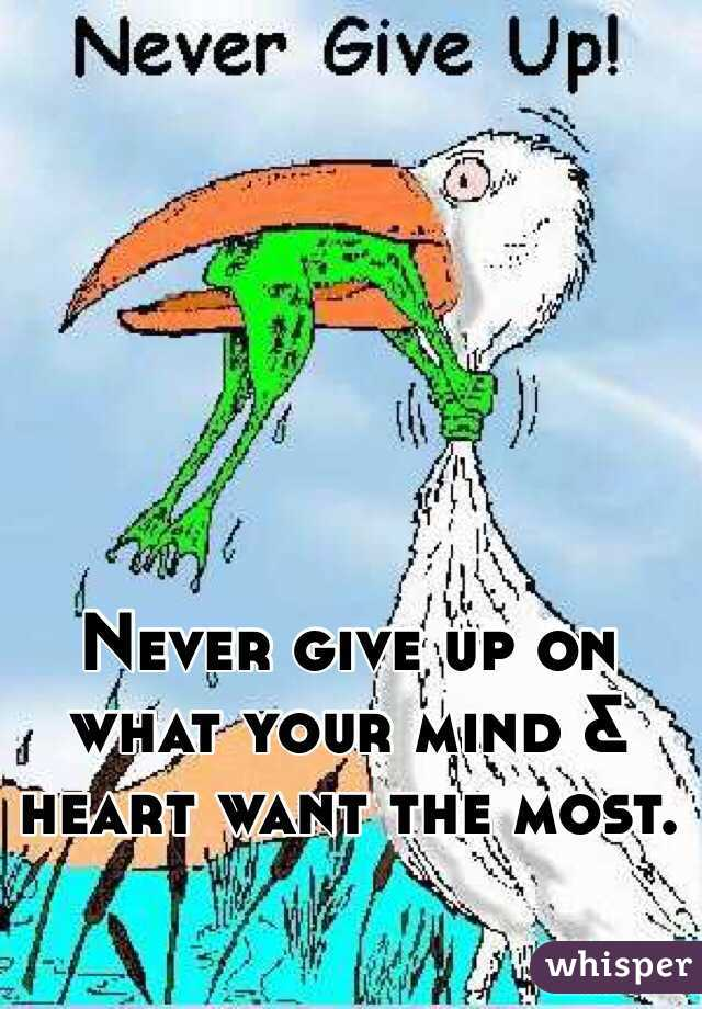 Never give up on what your mind & heart want the most.