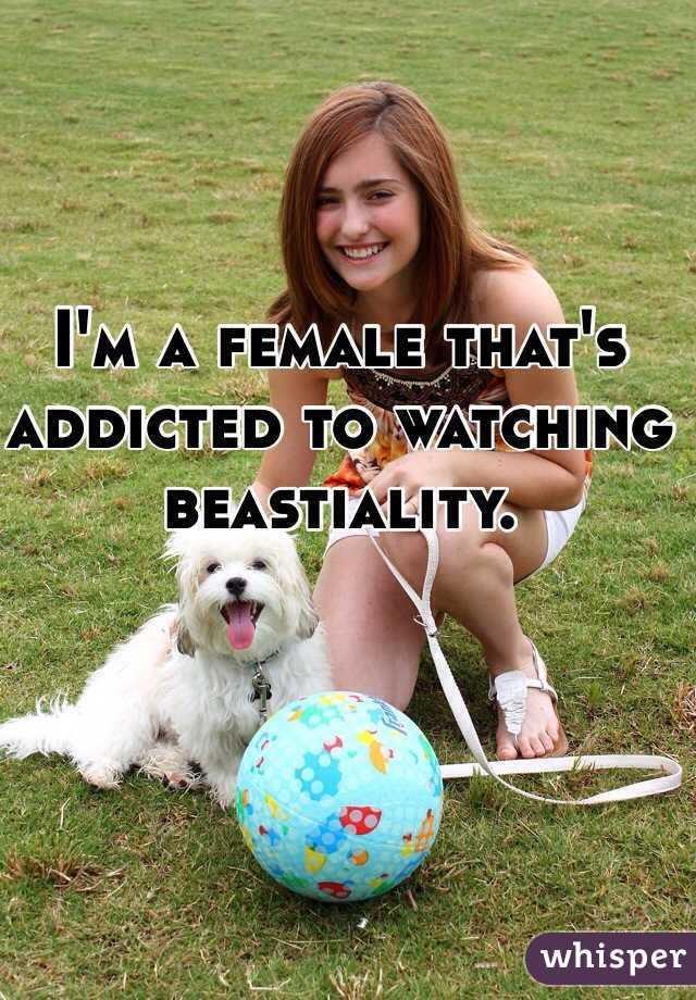 Beastiality free online