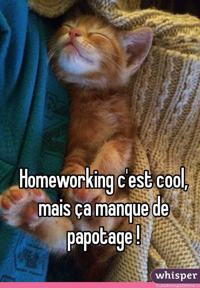 Homeworking c'est cool, mais ça manque de papotage !