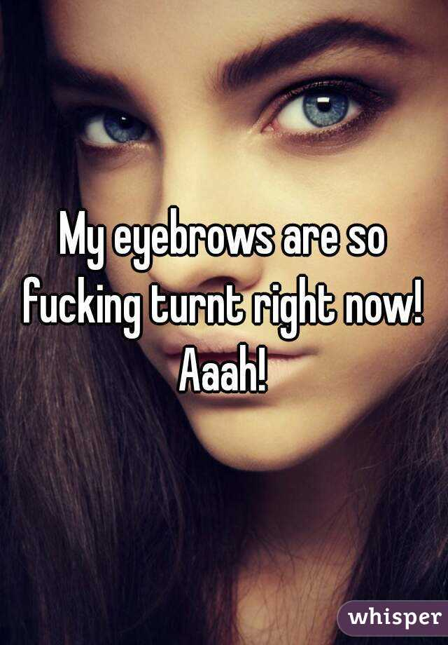My eyebrows are so fucking turnt right now!  Aaah!