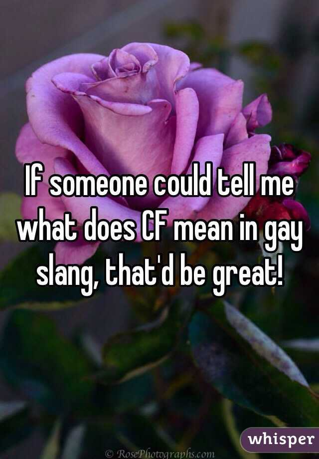 Gay dating lingo