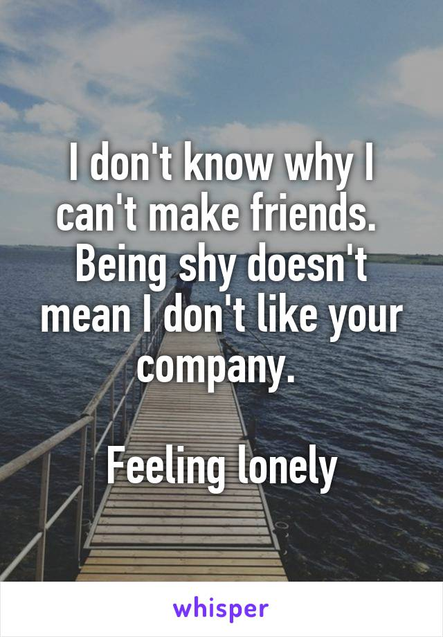 I don't know why I can't make friends.  Being shy doesn't mean I don't like your company.   Feeling lonely