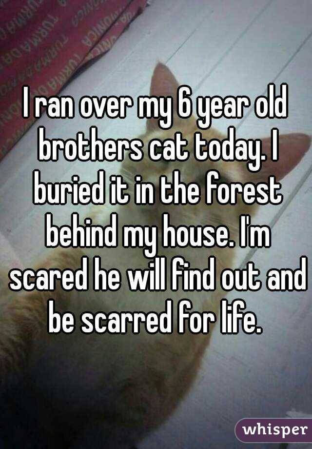I ran over my 6 year old brothers cat today. I buried it in the forest behind my house. I'm scared he will find out and be scarred for life.