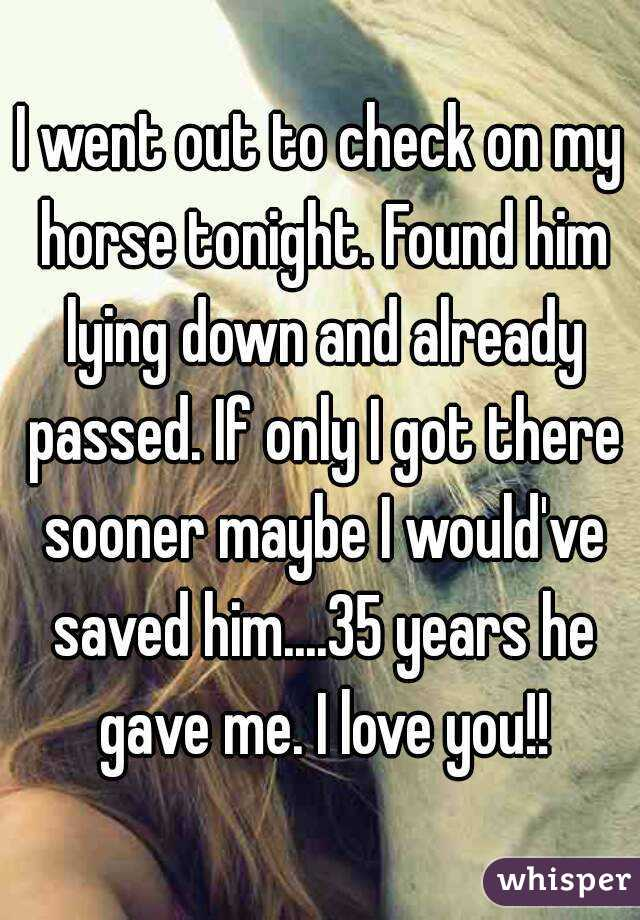I went out to check on my horse tonight. Found him lying down and already passed. If only I got there sooner maybe I would've saved him....35 years he gave me. I love you!!