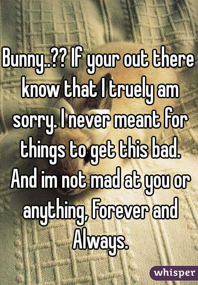Bunny..?? If your out there know that I truely am sorry. I never meant for things to get this bad. And im not mad at you or anything, Forever and Always.