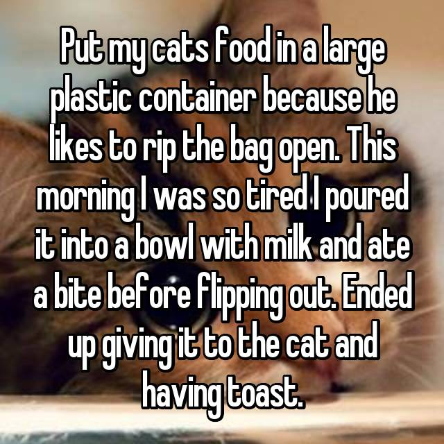 Put my cats food in a large plastic container because he likes to rip the bag open. This morning I was so tired I poured it into a bowl with milk and ate a bite before flipping out. Ended up giving it to the cat and having toast.