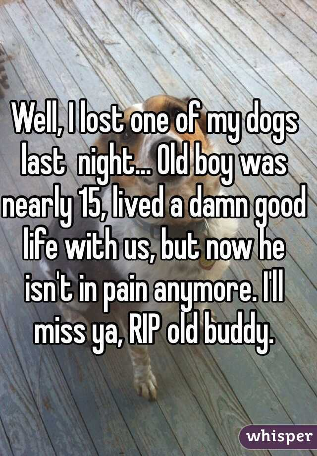 Well, I lost one of my dogs last  night... Old boy was nearly 15, lived a damn good life with us, but now he isn't in pain anymore. I'll miss ya, RIP old buddy.