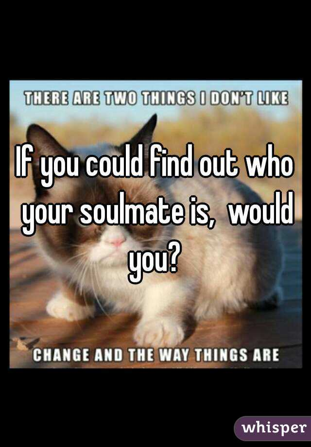 If you could find out who your soulmate is,  would you?