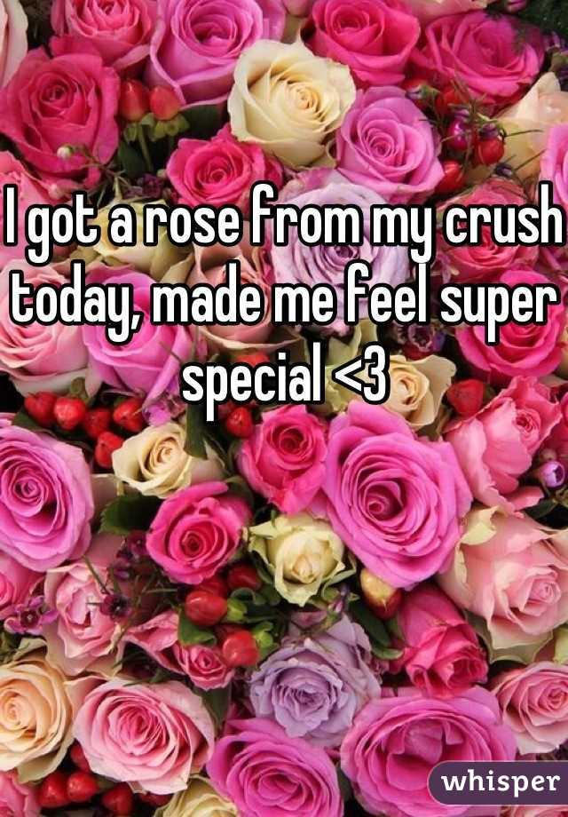 I got a rose from my crush today, made me feel super special <3