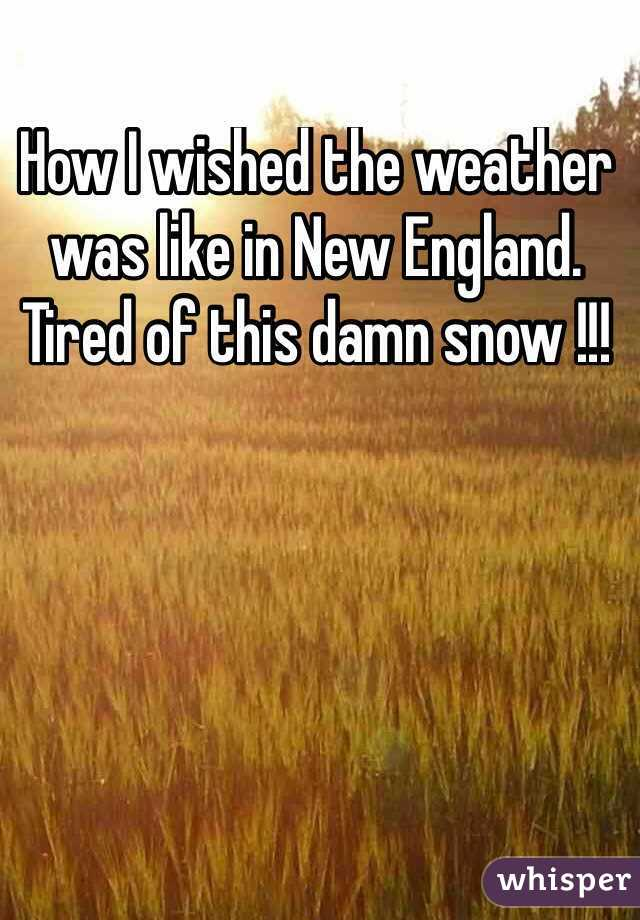 How I wished the weather was like in New England. Tired of this damn snow !!!
