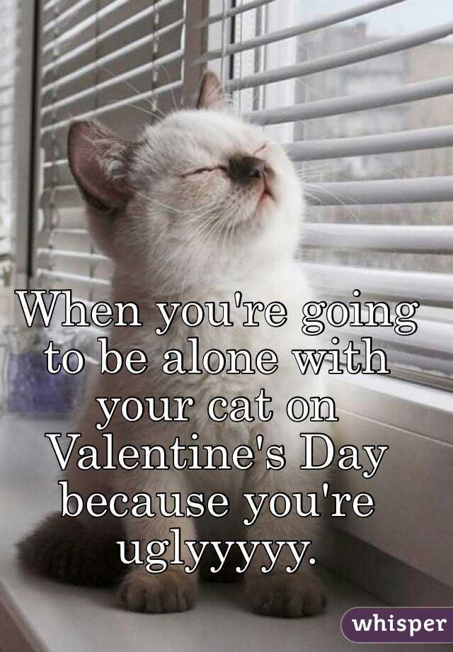 When you're going to be alone with your cat on Valentine's Day because you're uglyyyyy.