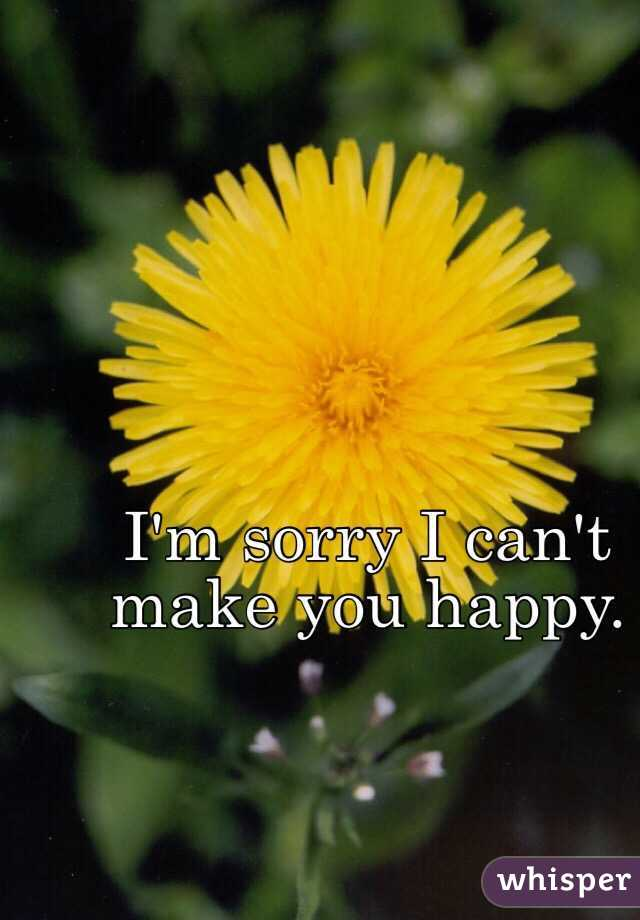 I'm sorry I can't make you happy.