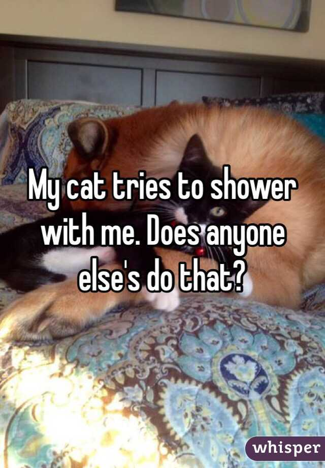 My cat tries to shower with me. Does anyone else's do that?