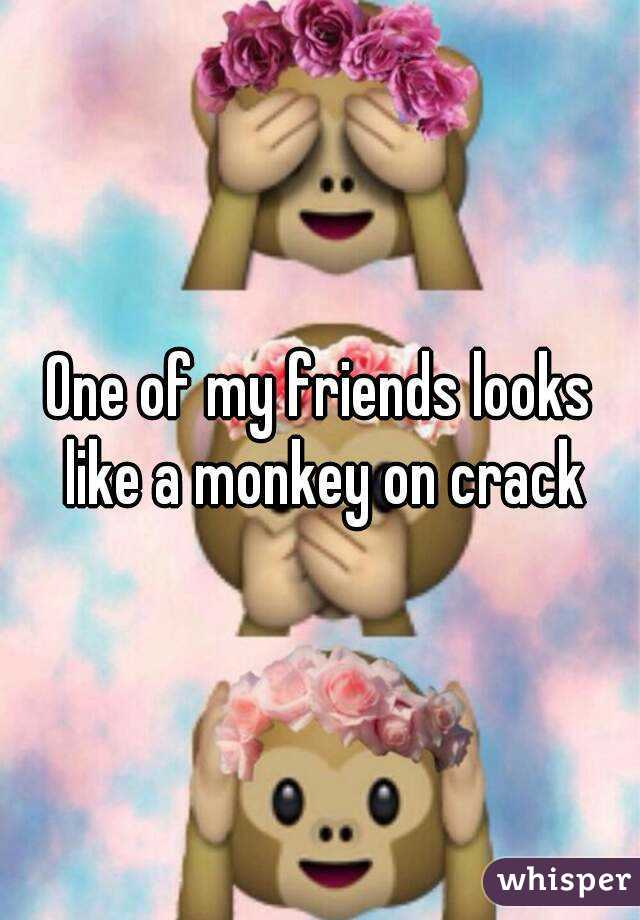 One of my friends looks like a monkey on crack