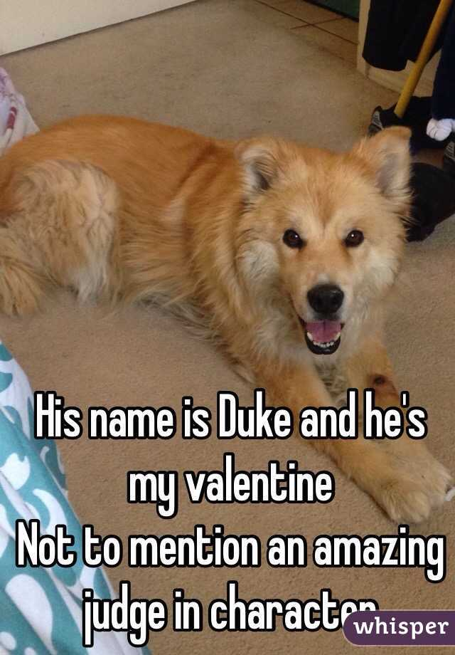 His name is Duke and he's my valentine  Not to mention an amazing judge in character