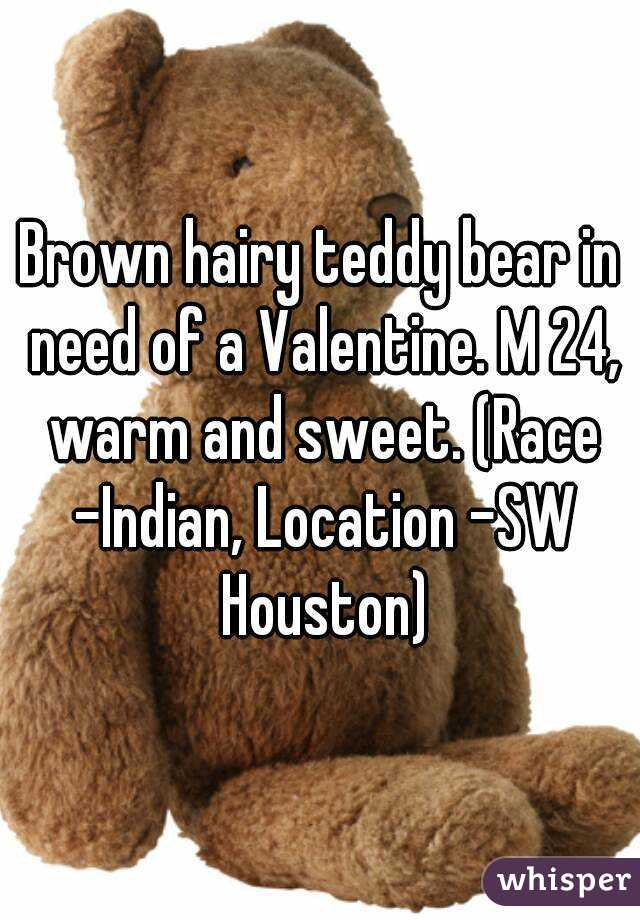 Brown hairy teddy bear in need of a Valentine. M 24, warm and sweet. (Race -	Indian, Location -	SW Houston)