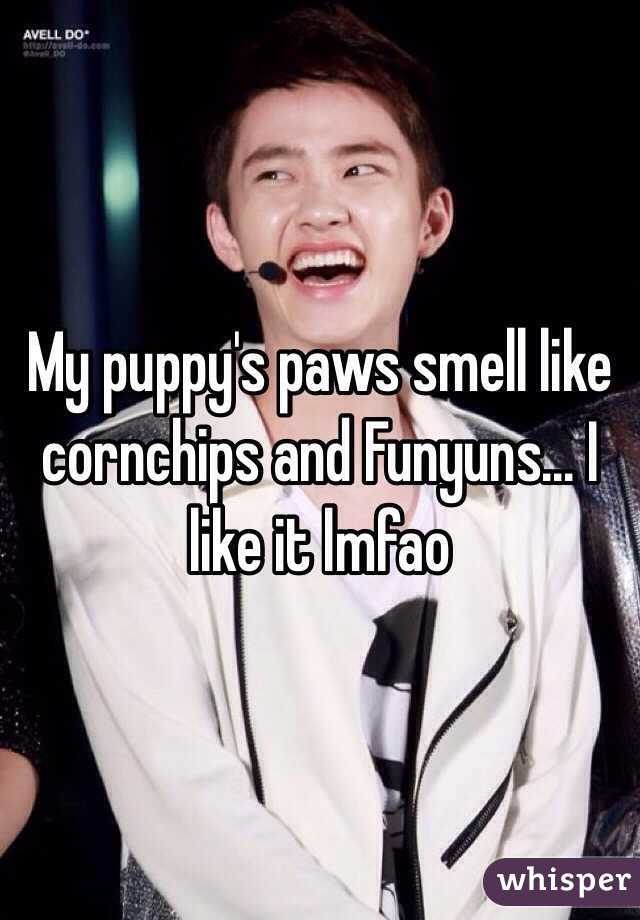 My puppy's paws smell like cornchips and Funyuns... I like it lmfao