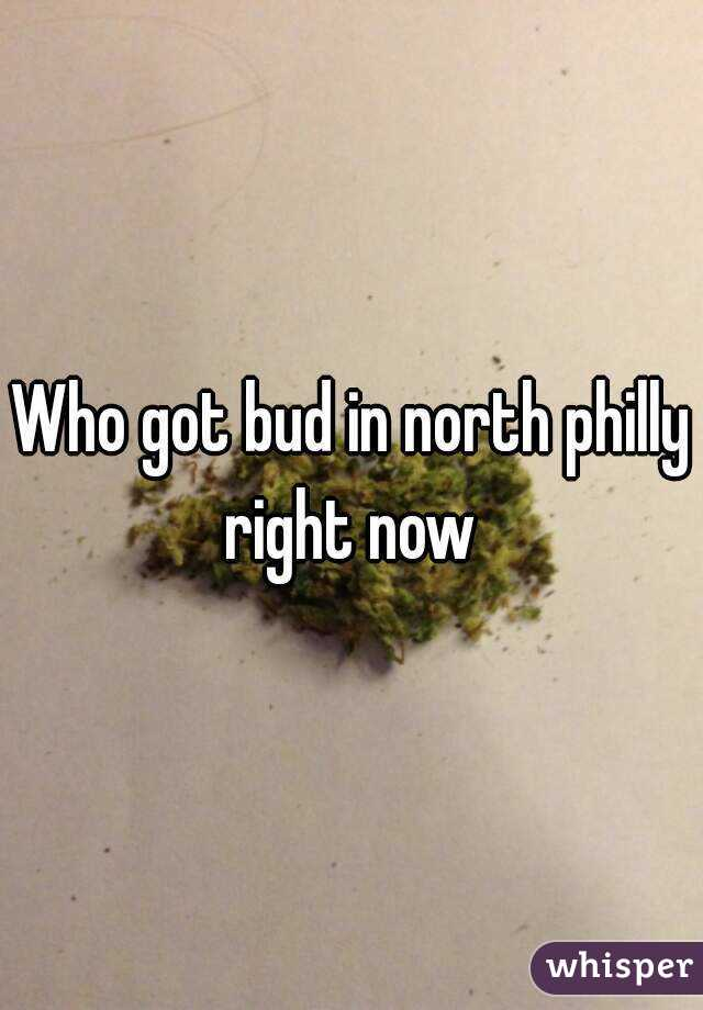 Who got bud in north philly right now