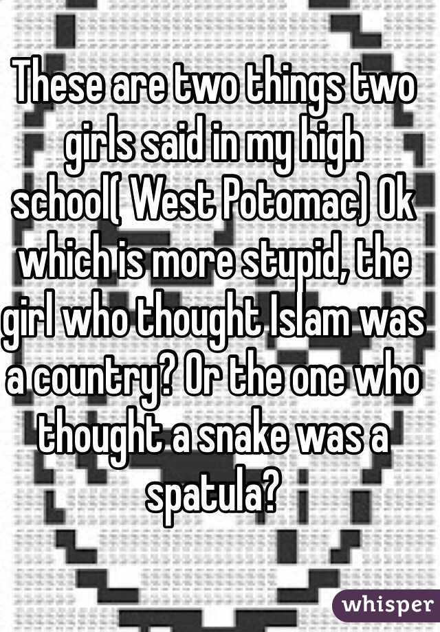 These are two things two girls said in my high school( West Potomac) Ok which is more stupid, the girl who thought Islam was a country? Or the one who thought a snake was a spatula?