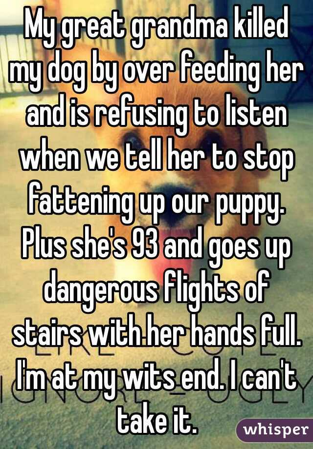 My great grandma killed my dog by over feeding her and is refusing to listen when we tell her to stop fattening up our puppy. Plus she's 93 and goes up dangerous flights of stairs with her hands full. I'm at my wits end. I can't take it.