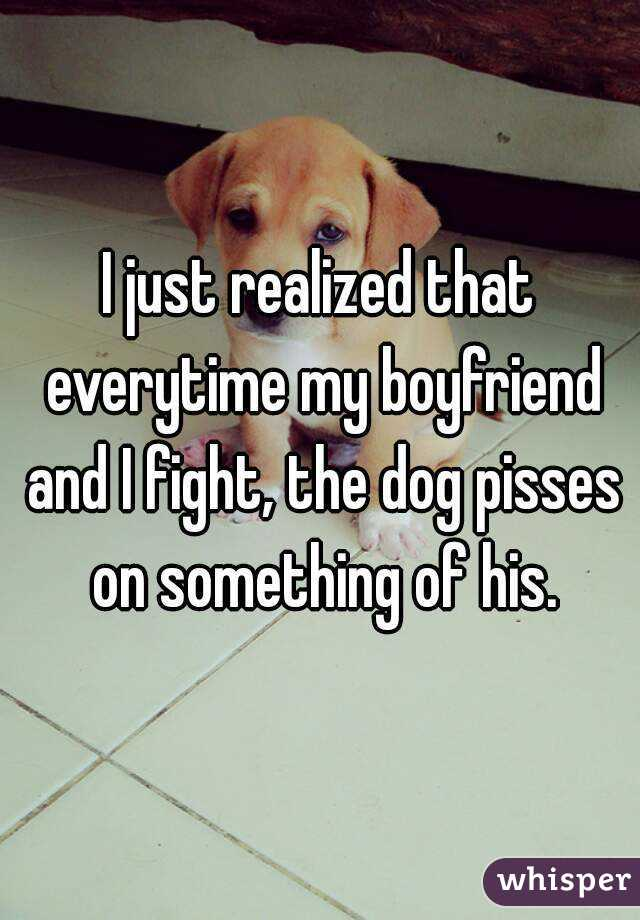 I just realized that everytime my boyfriend and I fight, the dog pisses on something of his.