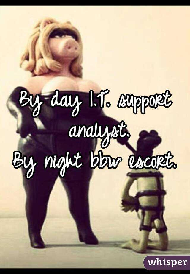 By day I.T. support analyst. By night bbw escort.