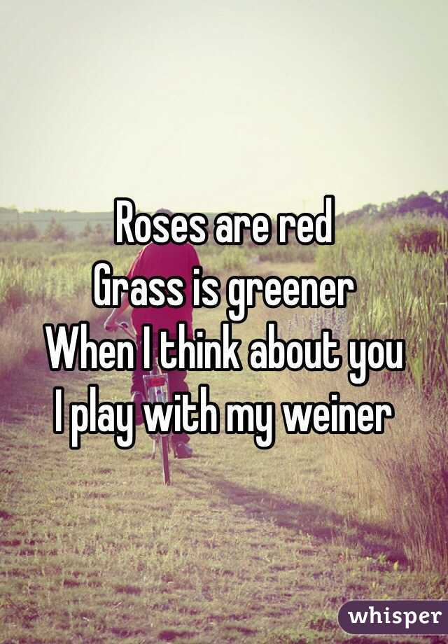 Roses Are Red Grass Is Greener When I Think About You I Play With My Weiner