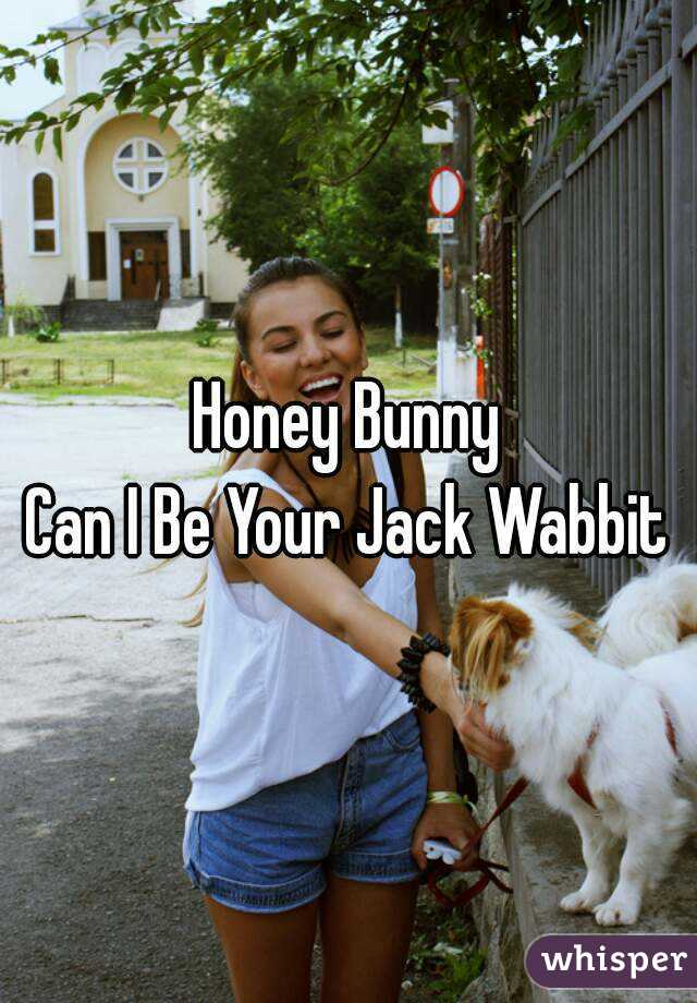 Honey Bunny Can I Be Your Jack Wabbit