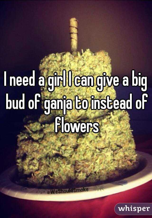 I need a girl I can give a big bud of ganja to instead of flowers