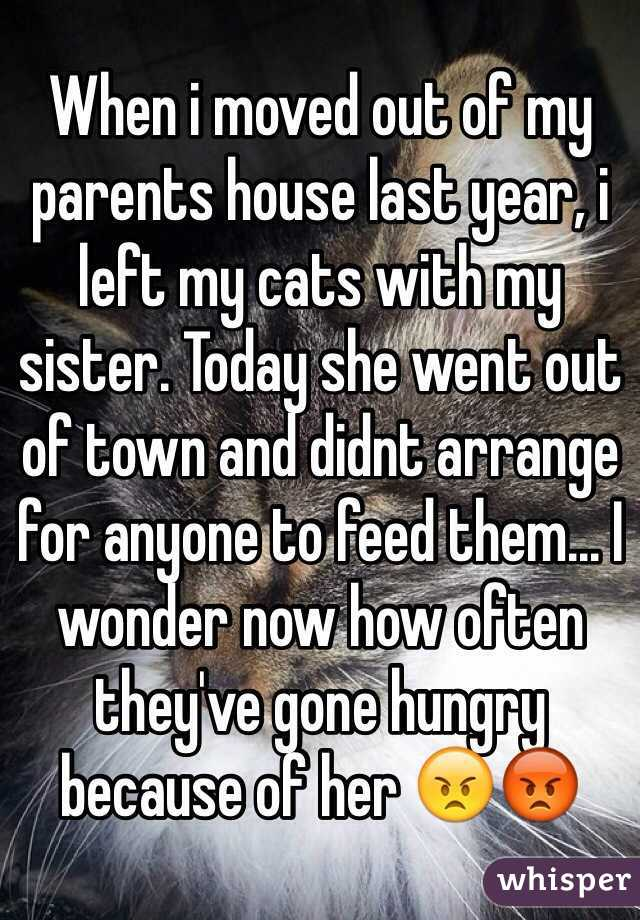 When i moved out of my parents house last year, i left my cats with my sister. Today she went out of town and didnt arrange for anyone to feed them... I wonder now how often they've gone hungry because of her 😠😡