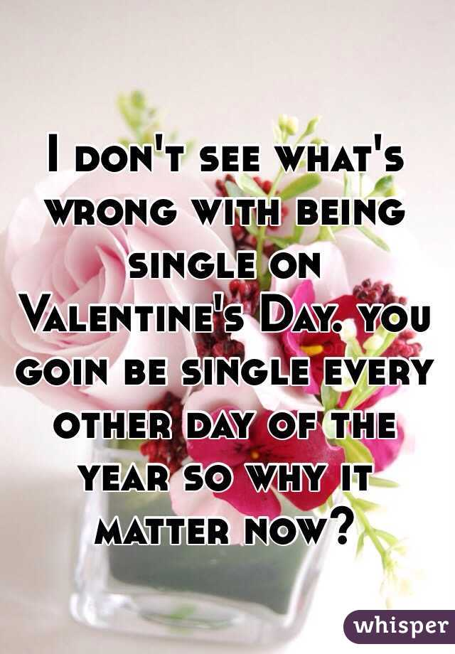 I don't see what's wrong with being single on Valentine's Day. you goin be single every other day of the year so why it matter now?