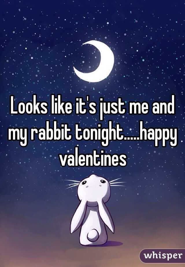 Looks like it's just me and my rabbit tonight.....happy valentines