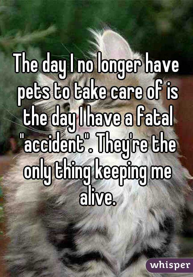 """The day I no longer have pets to take care of is the day I have a fatal """"accident"""". They're the only thing keeping me alive."""