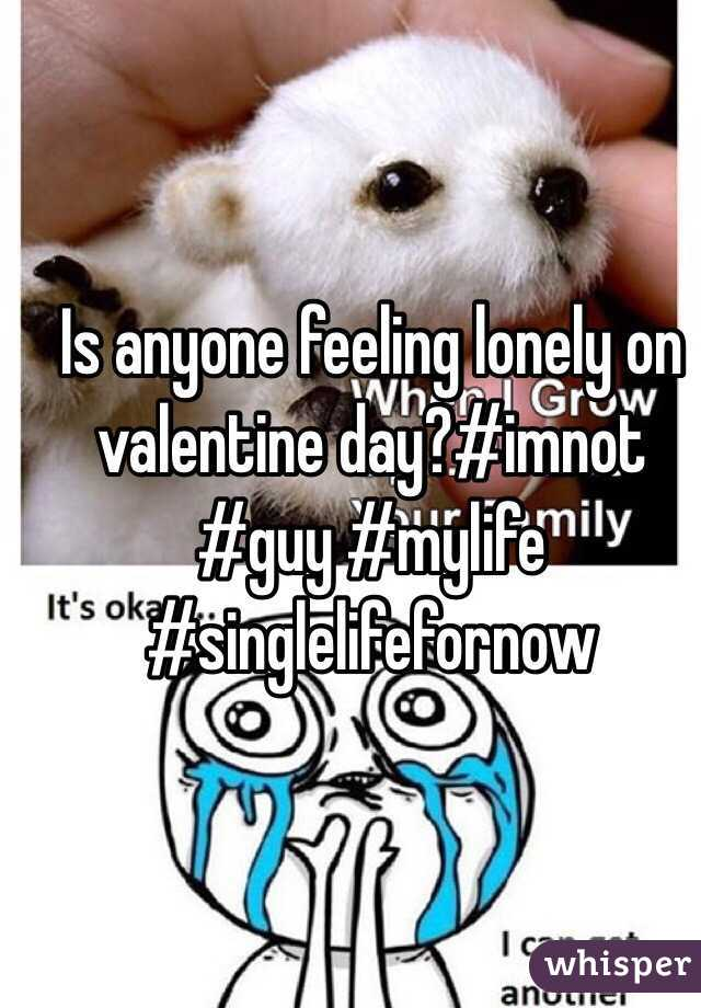 Is anyone feeling lonely on valentine day?#imnot #guy #mylife #singlelifefornow