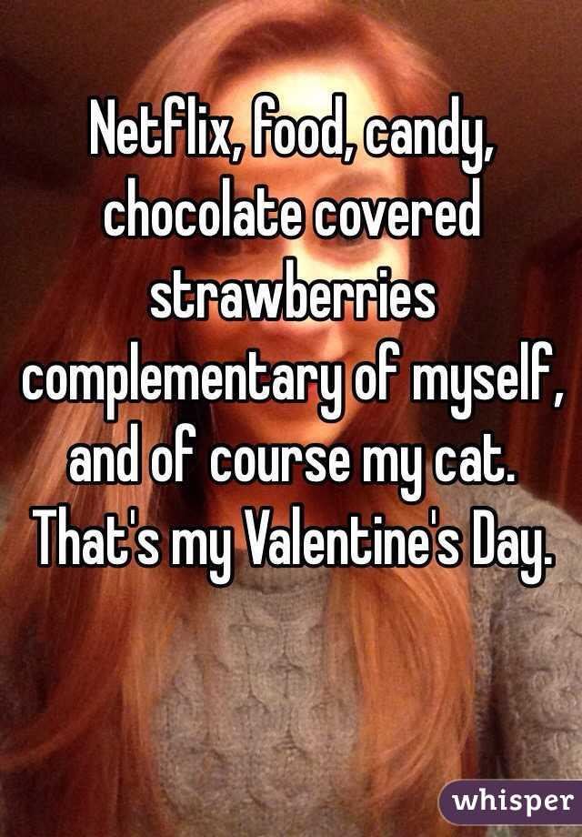 Netflix, food, candy, chocolate covered strawberries complementary of myself, and of course my cat. That's my Valentine's Day.
