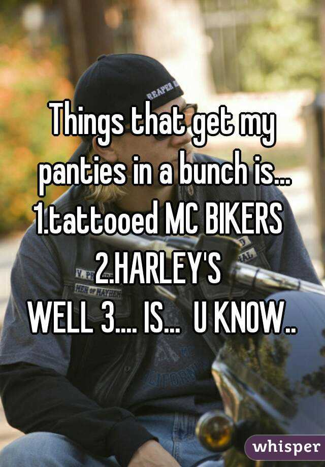 Things that get my panties in a bunch is... 1.tattooed MC BIKERS  2.HARLEY'S  WELL 3.... IS...  U KNOW..