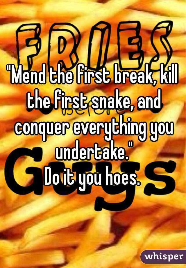 """Mend the first break, kill the first snake, and conquer everything you undertake."" Do it you hoes."