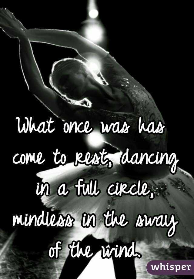 What once was has come to rest, dancing in a full circle, mindless in the sway of the wind.