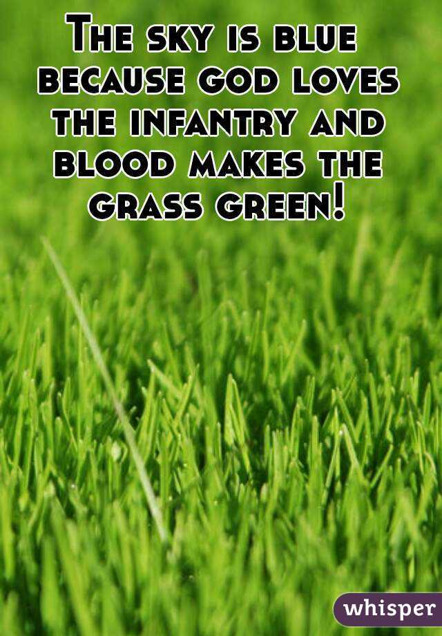 Why the grass is green