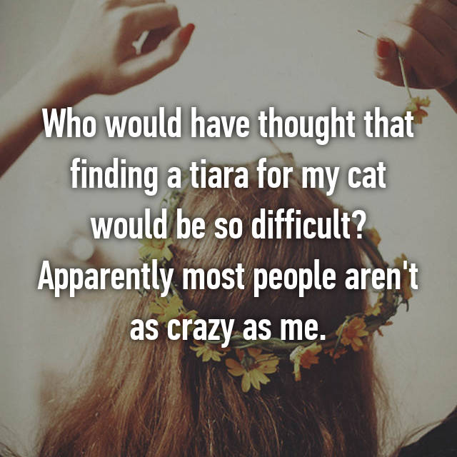 Who would have thought that finding a tiara for my cat would be so difficult? Apparently most people aren't as crazy as me.