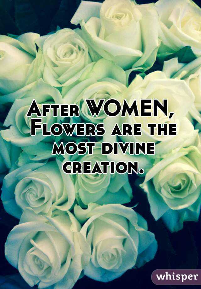 After WOMEN, Flowers are the most divine creation.