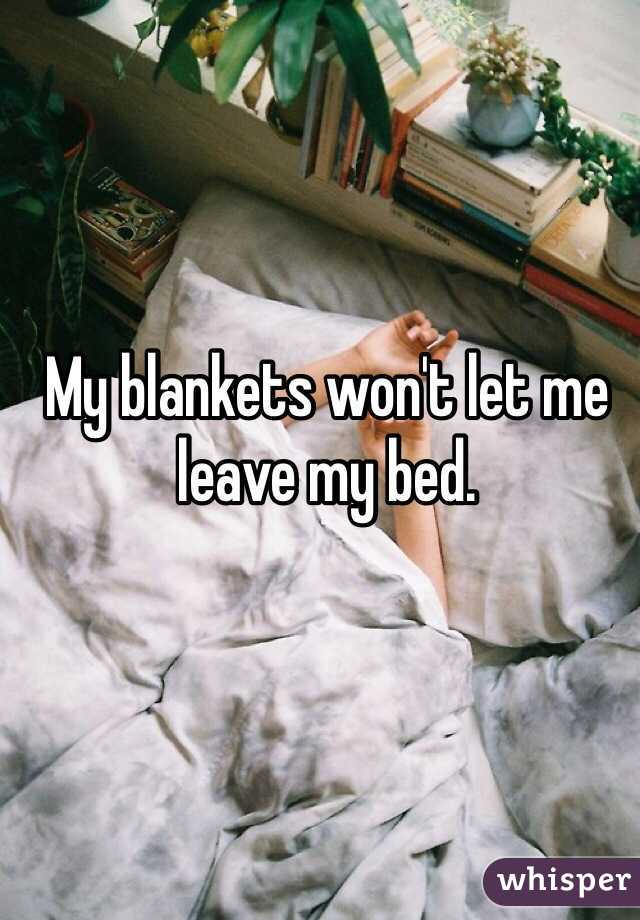 My blankets won't let me leave my bed.