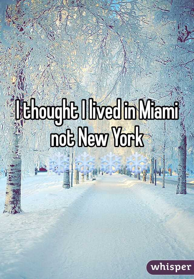 I thought I lived in Miami not New York ❄️❄️❄️❄️