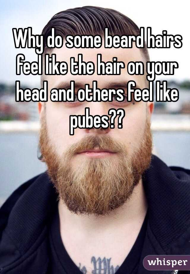 Why do some beard hairs feel like the hair on your head and others feel like pubes??