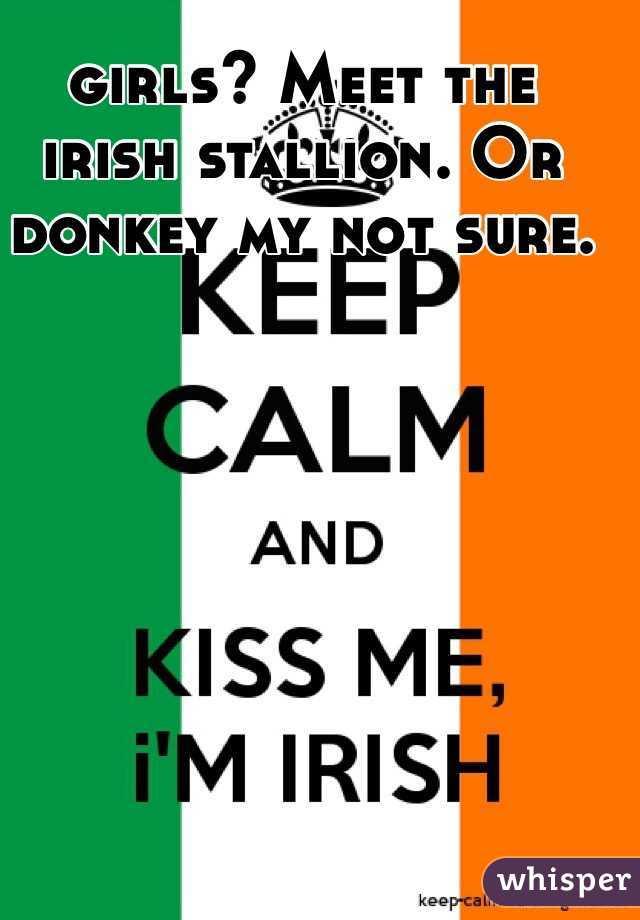girls? Meet the irish stallion. Or donkey my not sure.