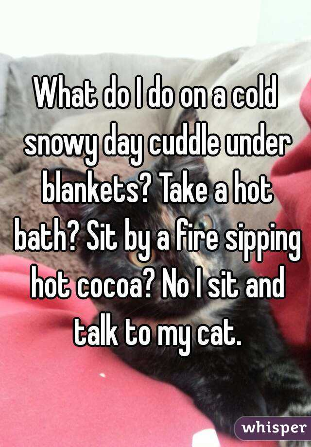 What do I do on a cold snowy day cuddle under blankets? Take a hot bath? Sit by a fire sipping hot cocoa? No I sit and talk to my cat.