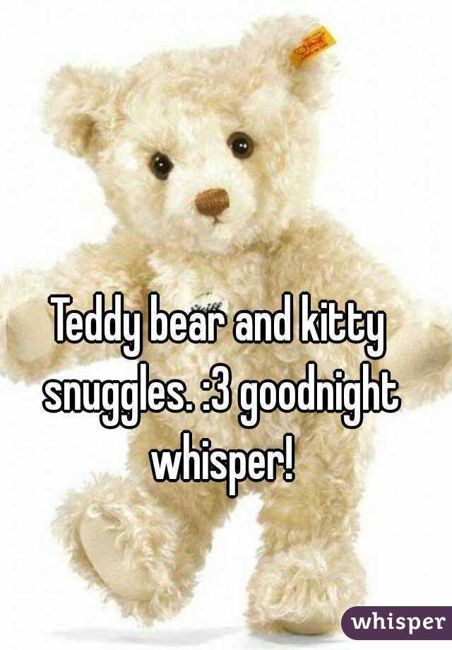 Teddy bear and kitty snuggles. :3 goodnight whisper!