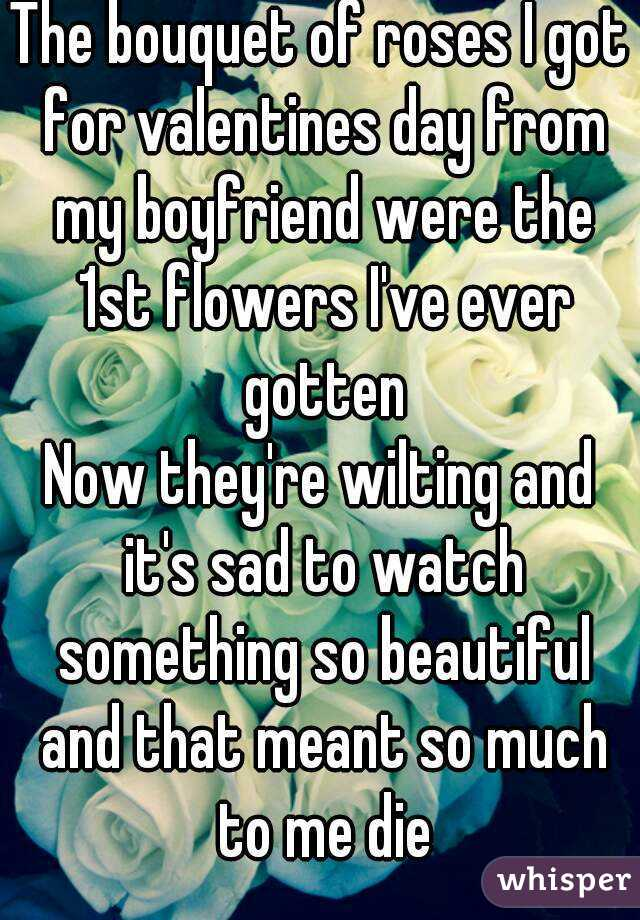 The bouquet of roses I got for valentines day from my boyfriend were the 1st flowers I've ever gotten Now they're wilting and it's sad to watch something so beautiful and that meant so much to me die