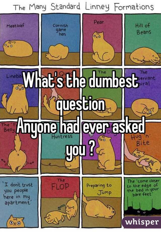 What's the dumbest question Anyone had ever asked you ?
